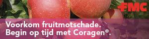 FMC: Begin optijd met Coragen